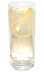 Apricot Twist - The Apricot Twist drink is made from gin, apricot brandy, fresh lemon and club soda.