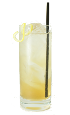Apricot Fizz - The Apricot Fizz is made from Apricot Brandy, fresh lemon juice, sugar syrup and club soda, and served in a chilled highball glass.