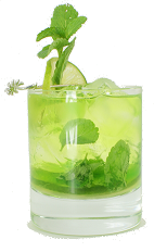 Midori Melon Mojito - The Midori Melon Mojito is made from Midori, light rum, mint leaves, lime and club soda, and served in an old-fashioned glass.