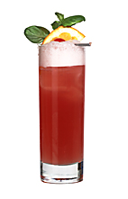 Levau Special - The Levau Special drink is made from orange vodka (aka Absolut Mandrin), Passoa, pineapple juice and cranberry juice, and served in a highball glass.