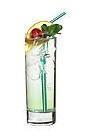 The Candy Bag drink is made from vodka, creme de menthe and Sourz Apple, and served in a highball glass.